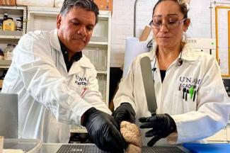 Innovador Banco de Cerebros, creado en la UNAM para diagnosticar en vida