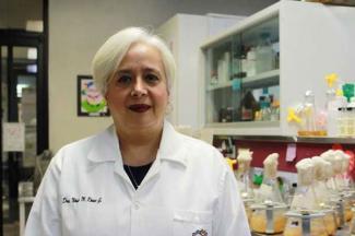 Desarrolla IPN bioinsecticidas para cultivos de interés económico