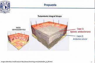 Estudian en la UNAM materiales para curar quemaduras graves